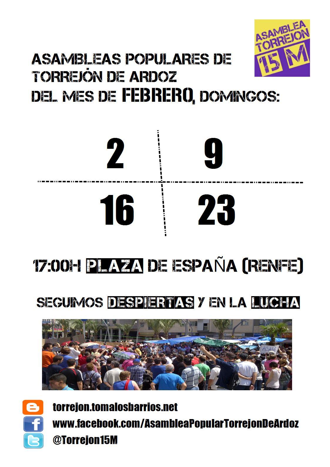 cartel_asambleas_febrero_2014